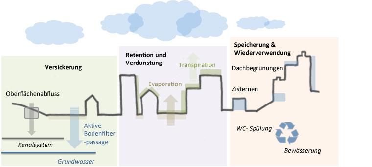 Grünflächen in der Stadt als effektives Regenwassermanagement