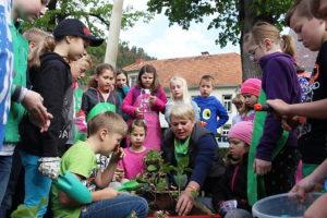 Urban Gardening, Urban Farming, rural Gardening; Passail