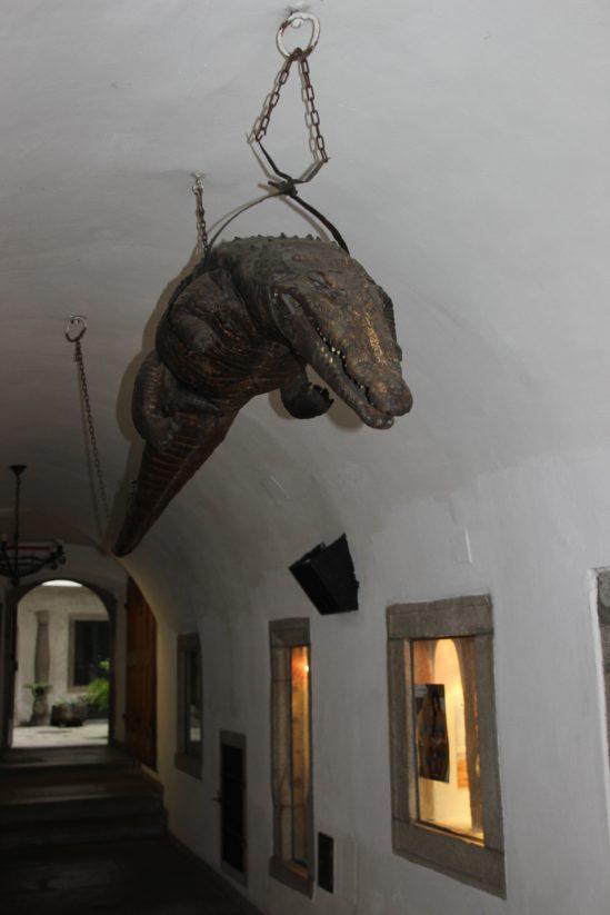 Gehen in der Stadt: Krokodil in Freistadt (c) Antonia Schulz