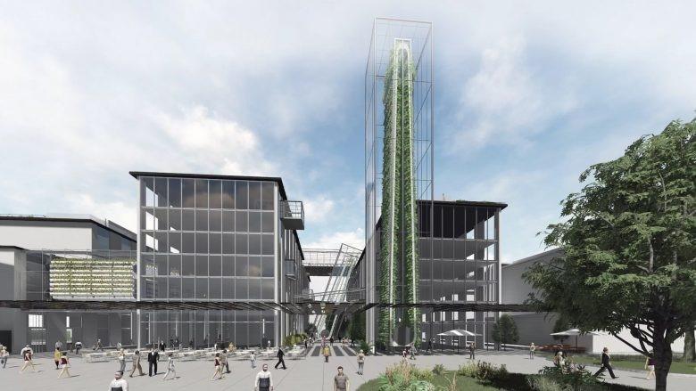 In Linz und Innsbruck sind die Planungen für Urban Farming schon fertig.