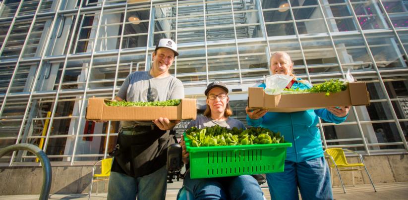Urban Farming in großem Stil in Verbindung mit bezahlbaren Wohnungen